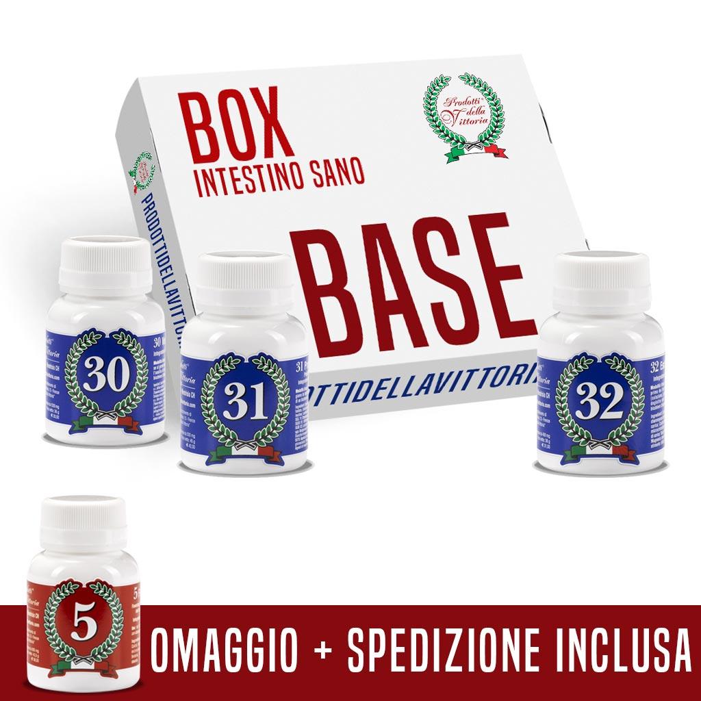 Box Base